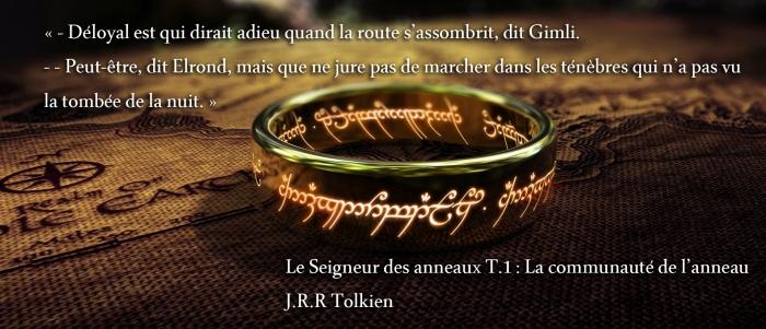 le seigneur des anneaux citation